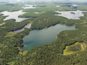 Saved. A nonprofit group has struck a deal to keep open Canada's Experimental Lakes Area.